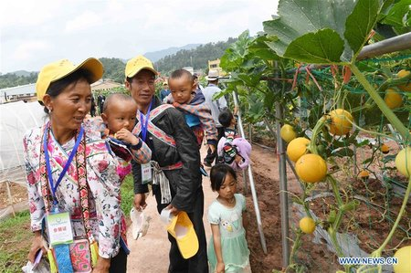 2018 China Yunnan Vegetable Seeds Expo Held